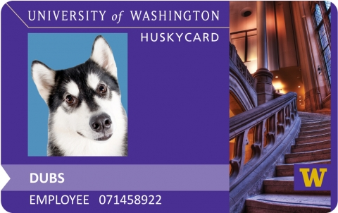 Husky Card.jpg